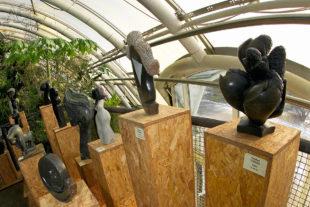 Africké sochy ve skleníku Fata Morgana | sochy na prodej