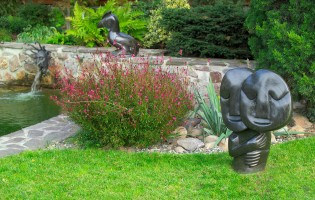 Garden statues: Davison Chakawa - Lovers