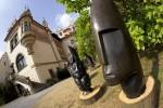 Sochy na zámku v Průhonicích