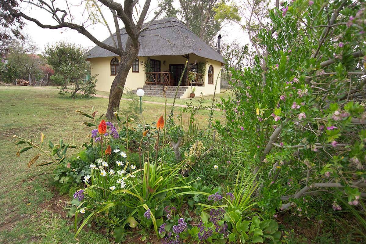 Zahrada a interiér v africkém stylu