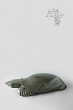 Socha želvy
