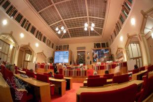 Vánoční benefice pro Guineu – dražba probíhala v hlavním sále pražského magistrátu