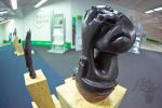 Vernisáž soch ve Fitstudiukotva