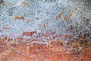 Jeskyní malby, Sanové, Bušmeni, Křováci