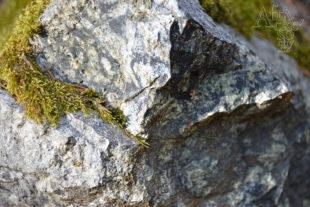 Hadec – kámen pro sochy
