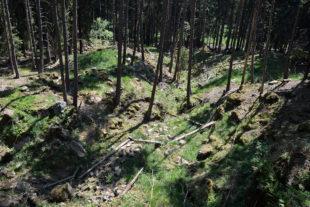 Mnichovské hadce - Planý vrch